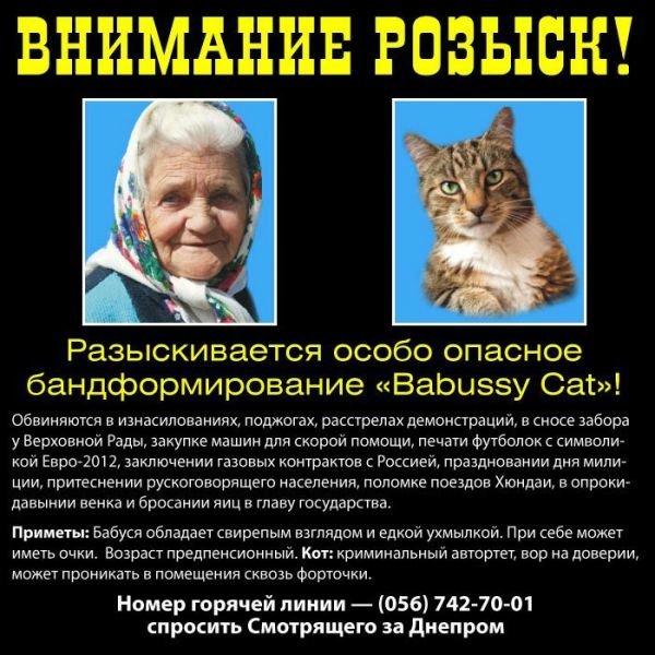 Бабушка, «переписавшая хату на кота», оказалась примерной россиянкой (ФОТО), фото-1