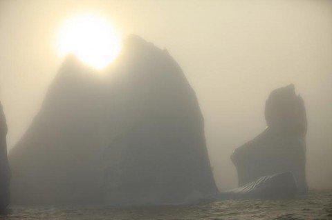 Мариупольские яхтсмены в Арктике установили очередной рекорд, фото-1