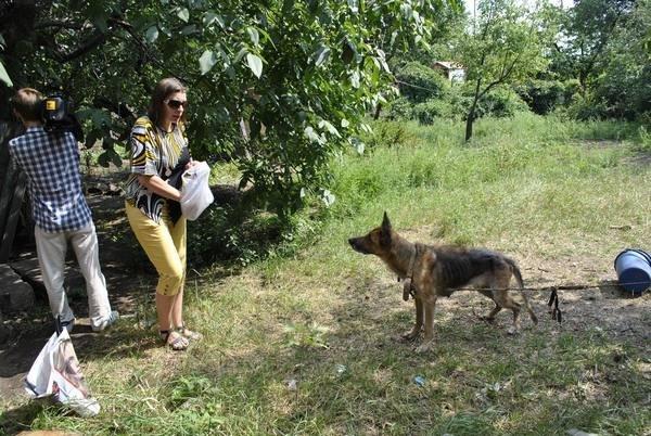 Мы в ответе за тех, кого приручили? В Мариуполе бездомная морит голодом породистых собак, фото-5