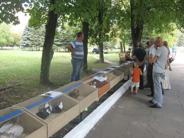 День города и День Шахтера в Красноармейске (ФОТО), фото-1