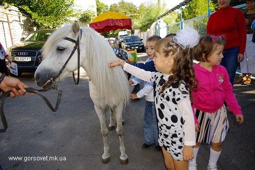 Николаевские малыши отметили Праздник Азбуки (ФОТО), фото-8