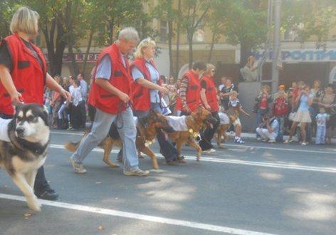 В Мариуполе породистые собаки примут участие в карнавале на День города (ФОТО), фото-2