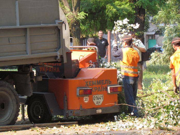 В Мариуполе педагоги отправили на щепу около 600 деревьев (ФОТО), фото-3