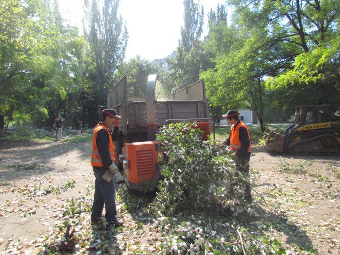 В Мариуполе педагоги отправили на щепу около 600 деревьев (ФОТО), фото-6