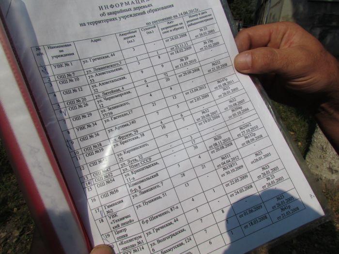 В Мариуполе педагоги отправили на щепу около 600 деревьев (ФОТО), фото-7