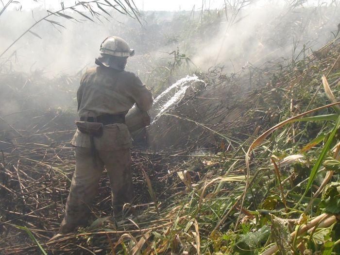 На Верхних Аджахах горит камыш (ФОТО), фото-6