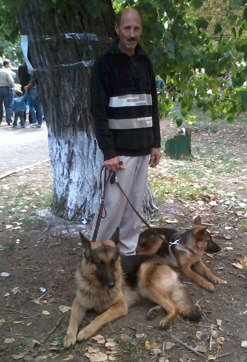 собаки3