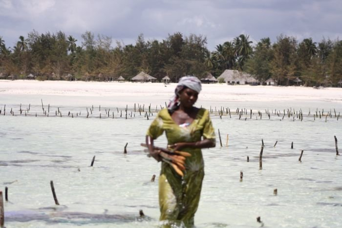 За душевным спокойствием - в Африку (ФОТО), фото-26