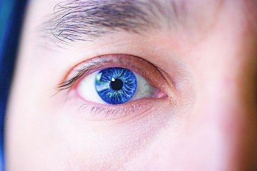 Учёные-перешли-к-выращиванию-человеческого-глаза