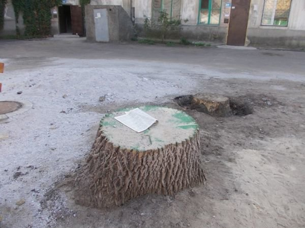 В одном из артемовских дворов появился фонтан, фото-9