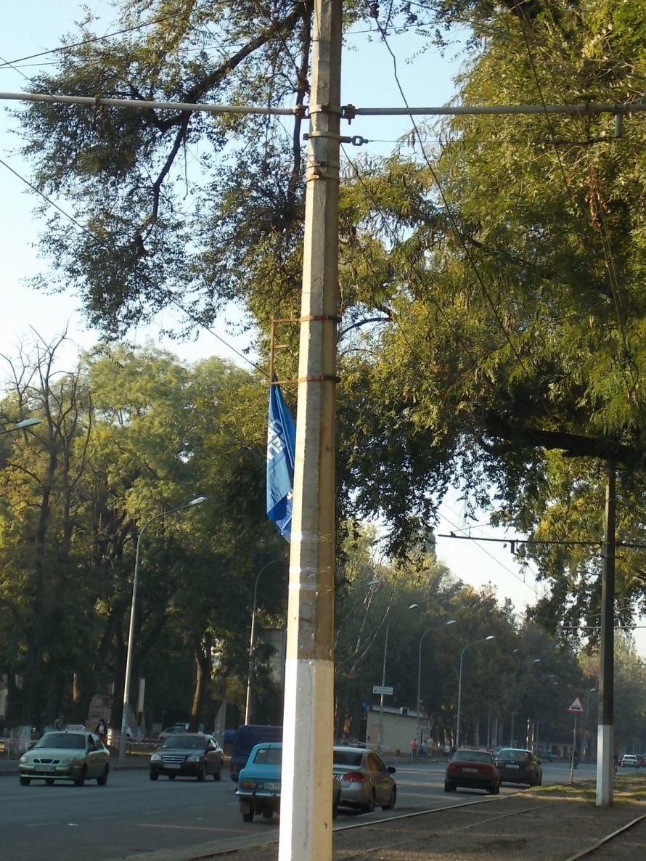 В Одессе даже трамвайные столбы подверглись атаке агитаторов от Партии регионов (Фото), фото-1