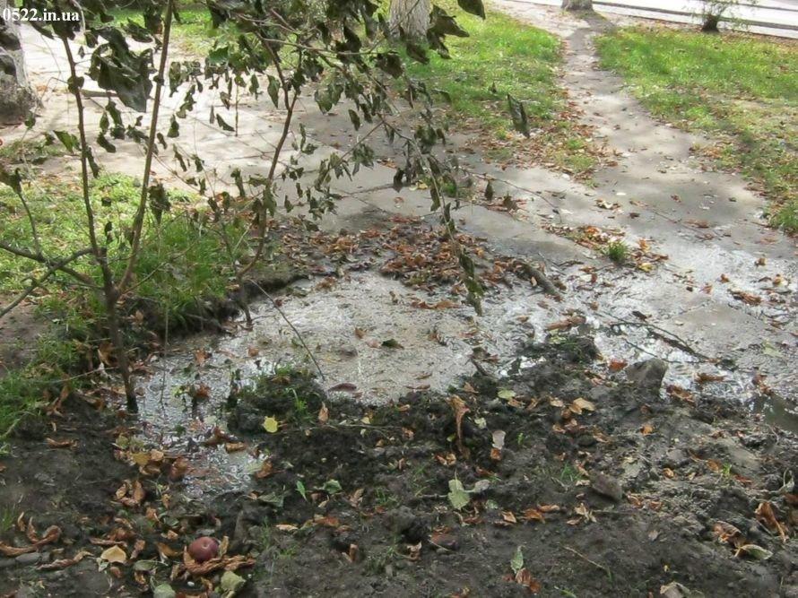 Вода точит не камень, а кировоградские тротуары, фото-1