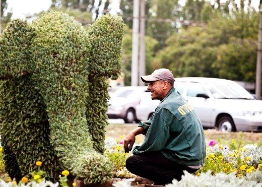 Слона из одесского парка законсервируют (Фото), фото-1