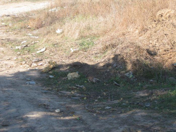 В Мариуполе инспекция по благоустройству проверит стихийную свалку на Таганрогской (ФОТО), фото-3