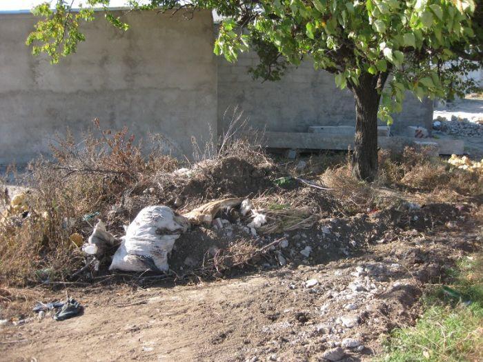 В Мариуполе инспекция по благоустройству проверит стихийную свалку на Таганрогской (ФОТО), фото-5