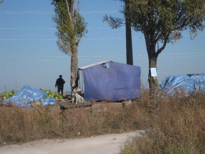 В Мариуполе инспекция по благоустройству проверит стихийную свалку на Таганрогской (ФОТО), фото-9