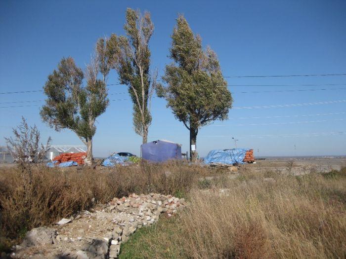 В Мариуполе инспекция по благоустройству проверит стихийную свалку на Таганрогской (ФОТО), фото-8