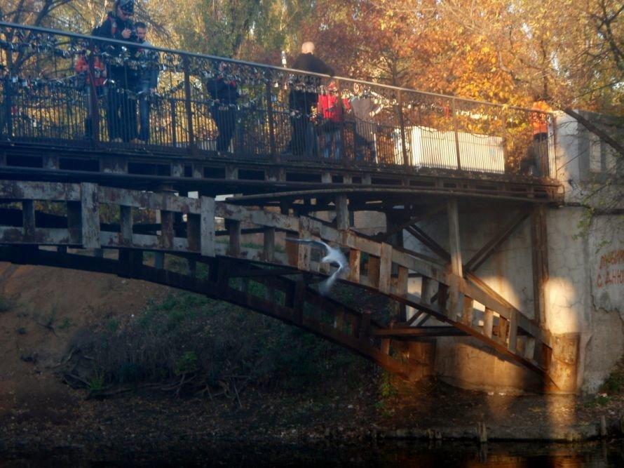 Безопасны ли замочки, которые влюбленные вешают на мосту в парке им. газеты «Правда» в Кривом Роге? (ФОТО), фото-2