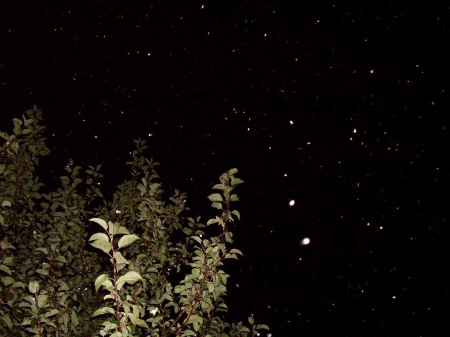 Кировоградцы, с первым снегом! (Фотофакт), фото-1