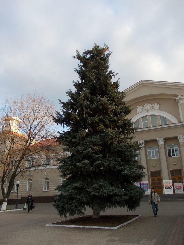 Праздничное настроение в Артемовске поможет создать новогодняя иллюминация, фото-2