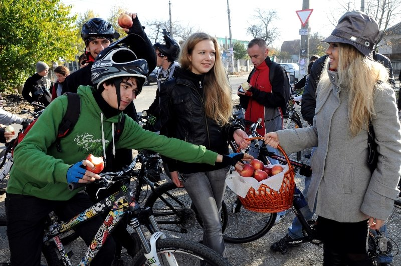 велосипед 037
