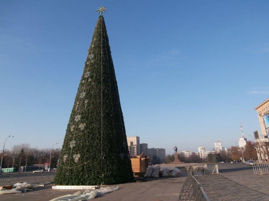 Главная новогодняя красавица готова радовать харьковчан (ФОТО), фото-1