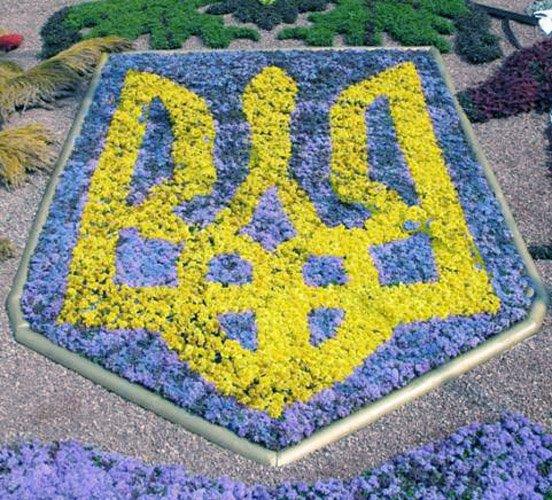 Сегодня - День свободы Украины, фото-1