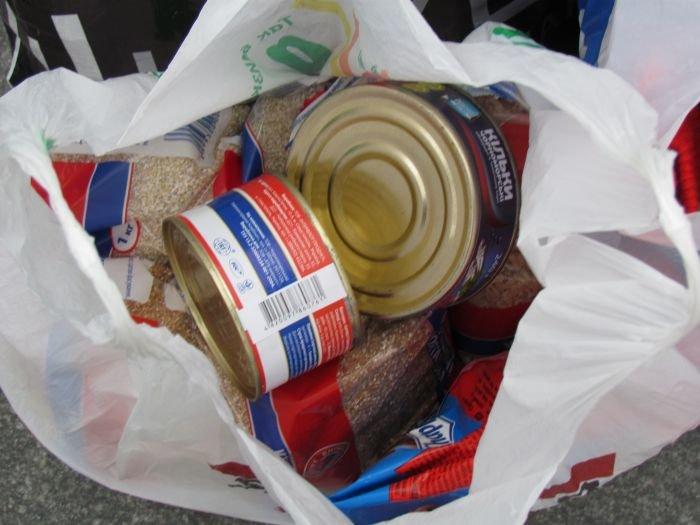 В Мариуполе десятки неравнодушных отдали животным продукты, газеты и даже матрас (ФОТО), фото-1
