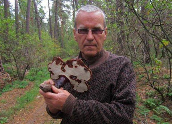 На Полтавщине был найден «гриб бессмертия», фото-1