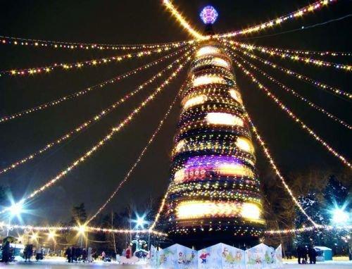 Главную елку Днепропетровска «зажгут» за два дня до Нового года, фото-1