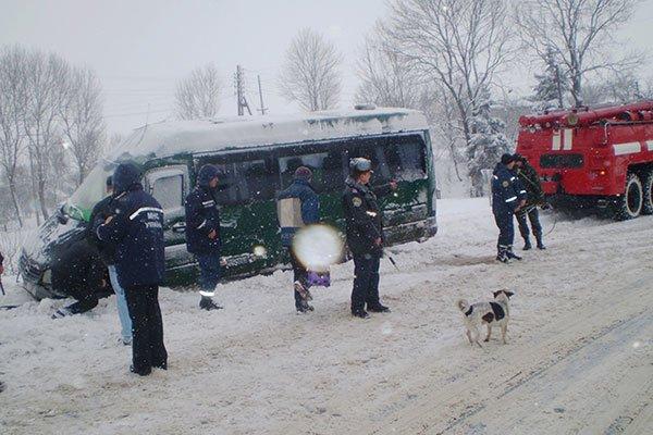 avtobus dtp2