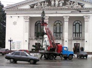 25 декабря - главная елка Мариуполя засияет огнями, фото-1