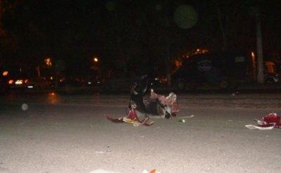 Лихач на гоночном мотоцикле сбил парня прямо на зебре (фото), фото-1