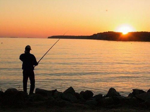 Ловись рыбка… еще 5 дней , фото-1
