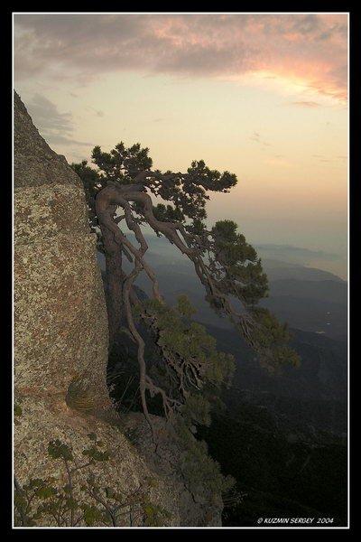От капельки росы до бесконечности неба… Новые фотовыставки на 0629.com.ua, фото-1