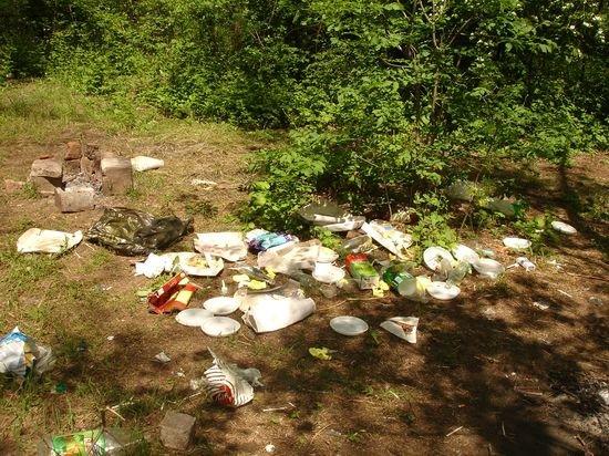 Мариупольские парки превратились в свалку. Им не до праздников (ФОТОФАКТ), фото-1