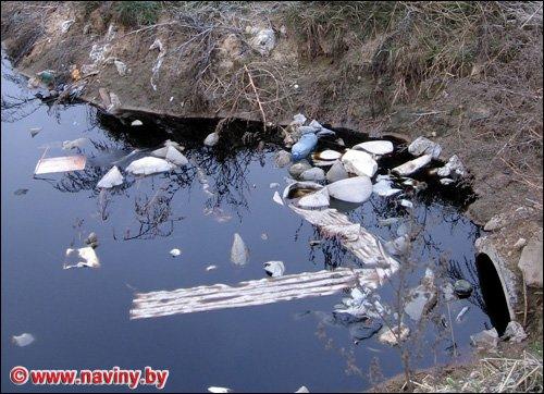 Мариупольская балка и ручей в 2 тысячи раз грязнее, чем допустимо     , фото-1