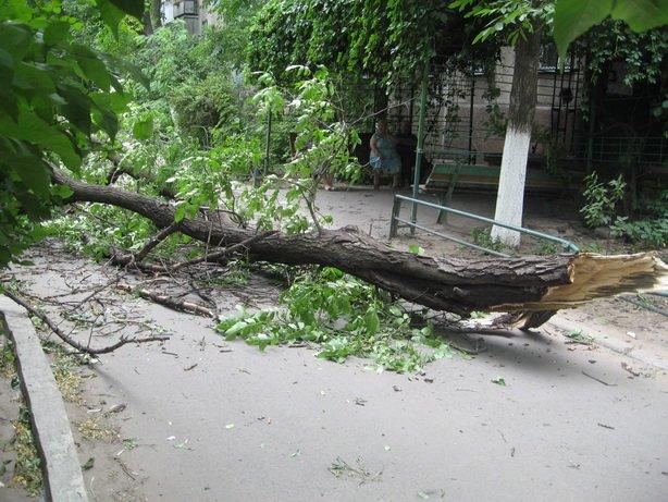 Последствия разбушевавшейся стихии в Мариуполе будут устранять еще несколько дней (ФОТО), фото-1