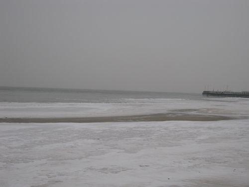 Море замерзло. Спасатели гоняют с тонкого льда детвору на санках  , фото-1
