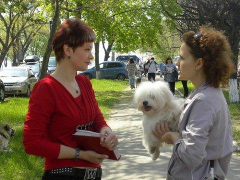 Всеукраинская выставка  собак  всех пород «Приазовье -2010» состоялась! (ФОТО), фото-1