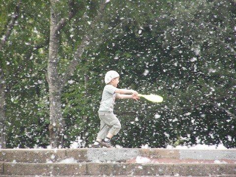 Аномальное цветение тополей в Мариуполе!  Горожане потянулись к аллергологам (ФОТО), фото-1