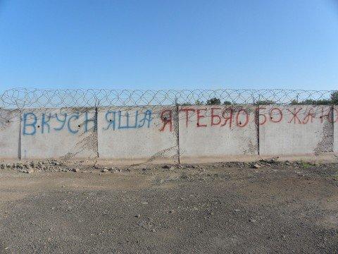 Мариупольцы борются за возвращение к истокам – к наскальной живописи (ФОТО), фото-1