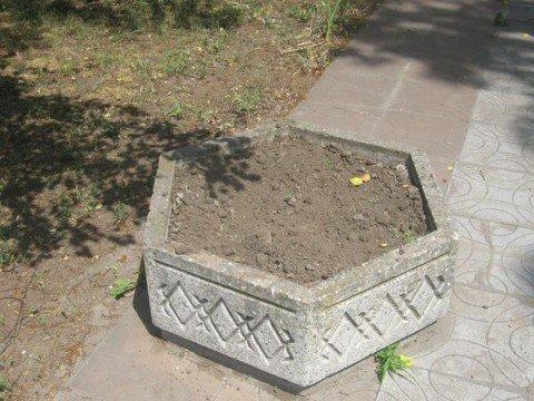 В Мариуполе воруют цветы у героев (ФОТО), фото-1