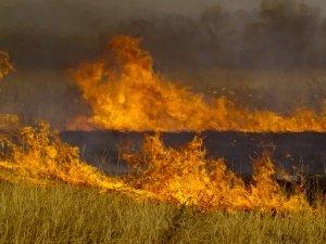 В Мариуполе жарко: горят иномарки, стиральные машины, электросчетчики и трава, фото-1