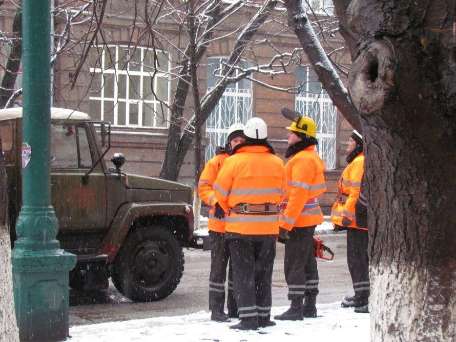 В Мариуполе спасатели обрезают ветви деревьев (Фотофакт), фото-1