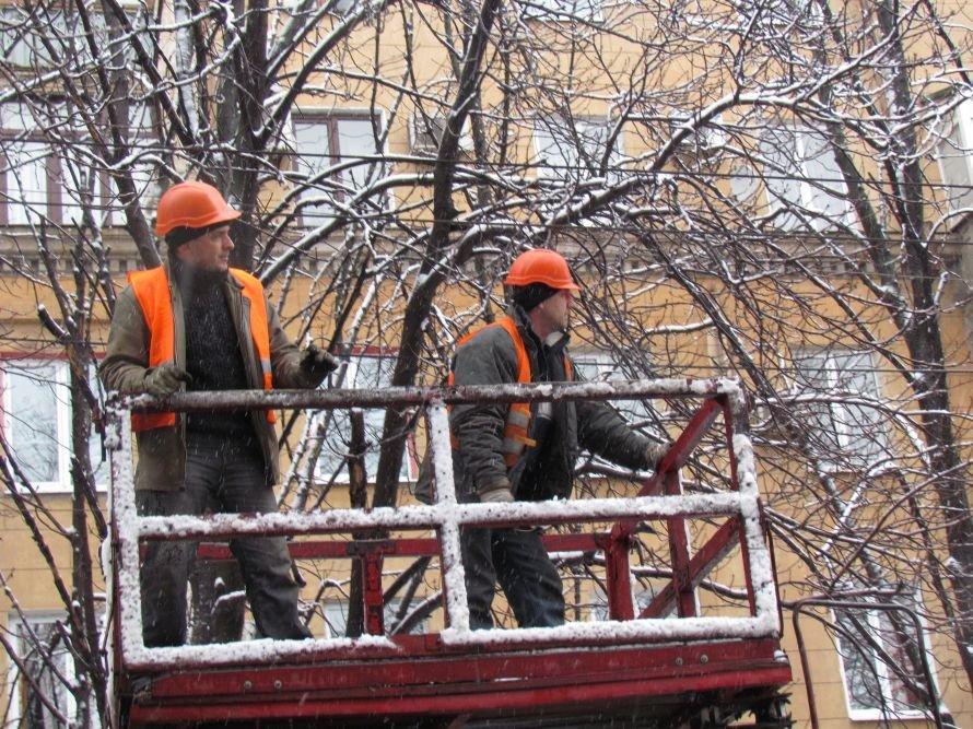 В Мариуполе спасатели обрезают ветви деревьев (Фотофакт), фото-3