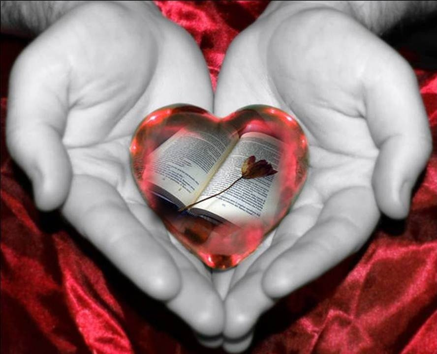 Сердце книги