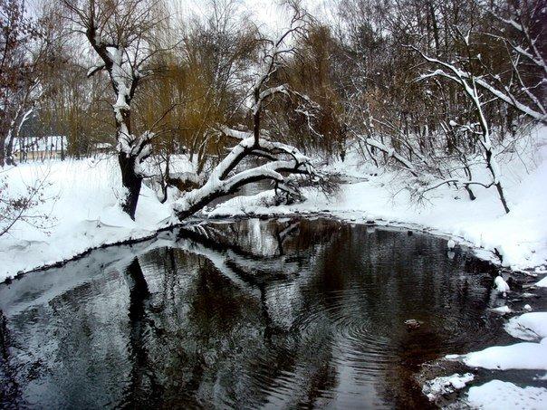 zima topilce 1
