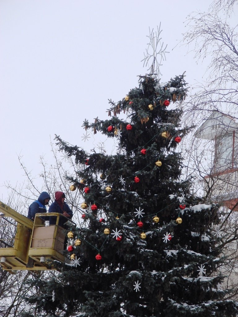 Артемовцам к Новому году подарят стильную елку, фото-4