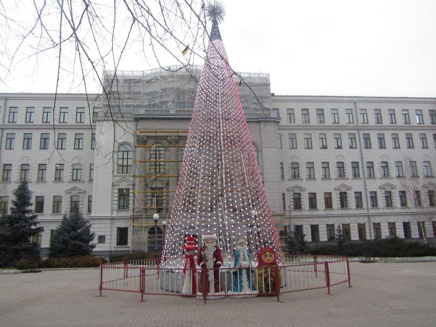 Областная елка в Днепропетровске дарит не только радость, но и вселяет грусть (ФОТО), фото-1